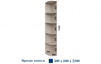 Консоль 300*600*2100 Прямая Феникс